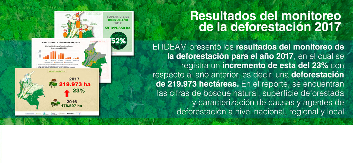Cifra deforestacion Colombia 2017